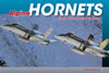 Alpine Hornets F/A-18 in the Swiss Air Force